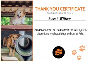 soi dogs charity